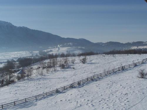 peisaje (2)